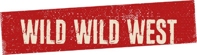 El Gringo - Wild Wild West